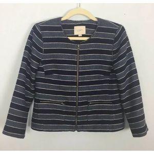 Ann Taylor Loft Blue Striped Jacket